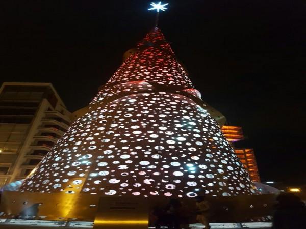 Christmas Tree - BCD